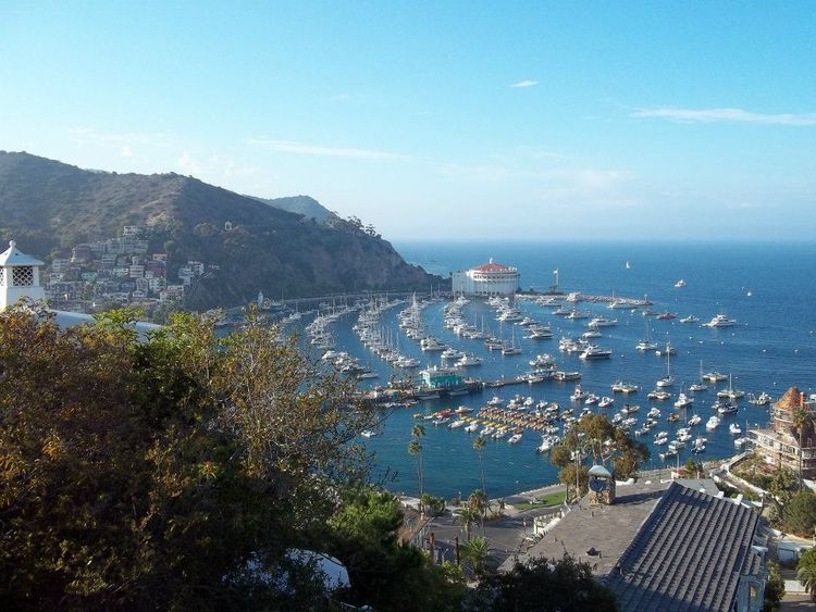 Catalina+Island